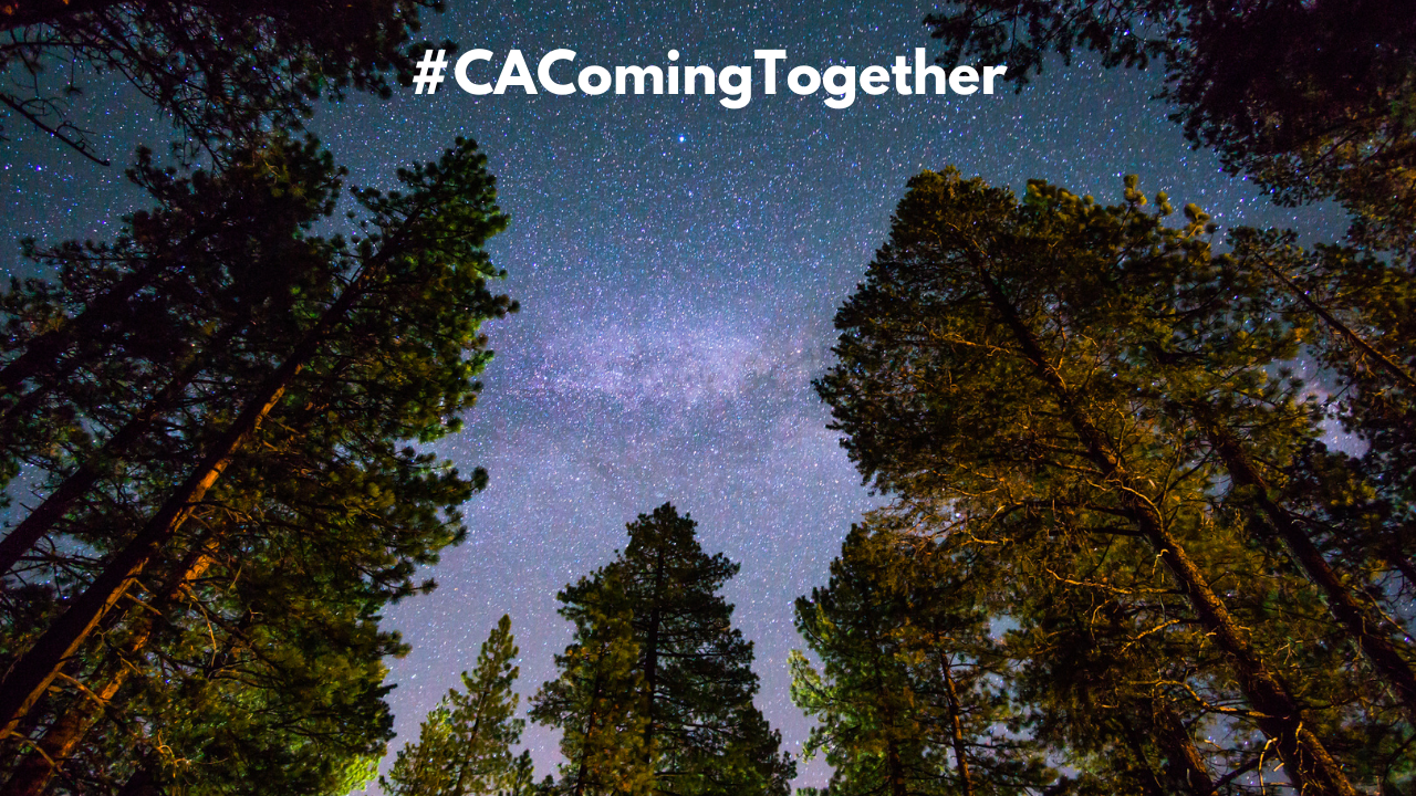 Image of Redwoods, California at night #CAComingTogether